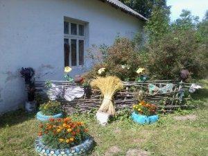 День деревни Климово